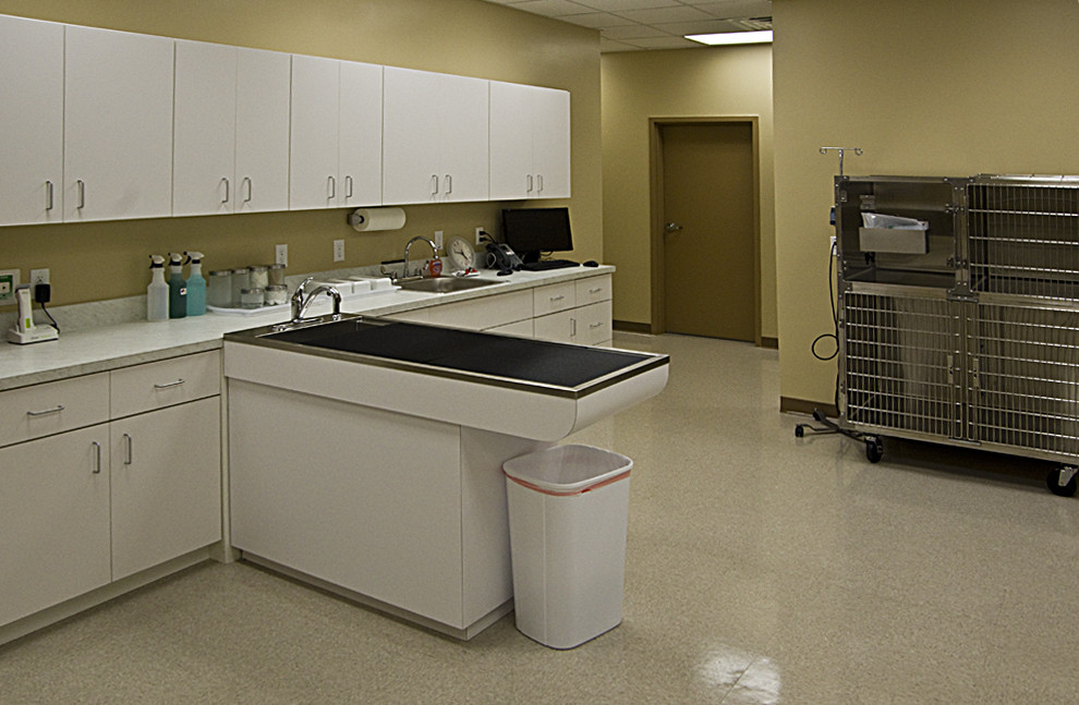 Our treatment area and ICU unit.